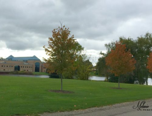 Photo of a college campus. Child leaves for college.