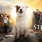 Giveaway | How a Dog Saved a Family in 'The Stray'
