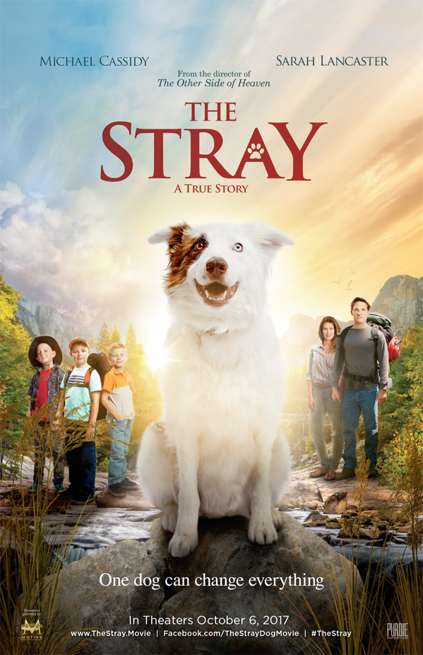 'The Stray' movie in theaters now! family in 'The Stray'