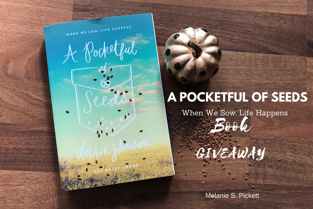 'A Pocketful of Seeds' by author Debbie Johnson. 'A Pocketful of Seeds' book giveaway