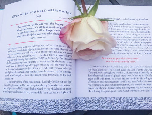 An open page with light pink roses around. 'Always Enough, Never Too Much' holds 100 devotions. 'Always Enough, Never Too Much' devotional